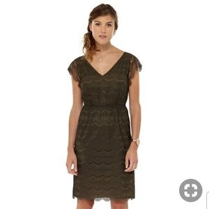 NWT Fossil lace olive Penny dress